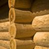 Как предотвратить появление грибка на стенах?